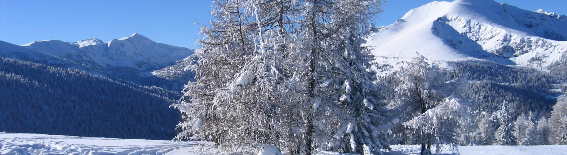 Mittelkärnten Wintergenuss