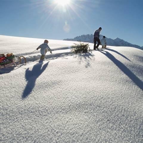 Die ganze Familie hat Spaß beim Christbaum holen mit dem Schlitten im Schnee.